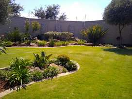 Garden and landscaping services