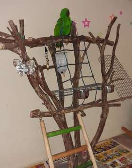 parrot play stand only