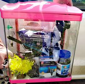 Fish tank for sale geat