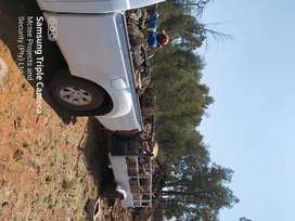 Tree felling services Alberton