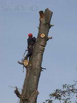 обрізання та зрізання аварійних дерев