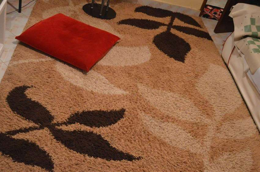 SHAGGY CARPET ON SALE 0