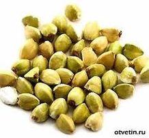 СЕМЕНА зерновые/пшеница,ячмень,овес,гречка/-Элита Канада_Украина.ГОСТ