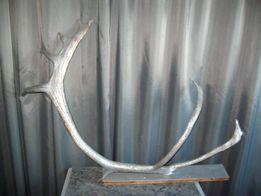 Олений рог дизайнерская обработка рога оленьи декор арт-объект