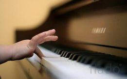 Научу играть на пианино, синтезаторе