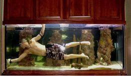 Профессиональный уход за Вашим аквариумом