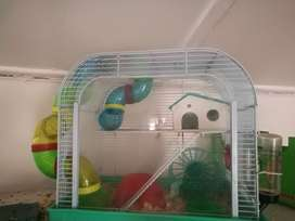 Hamster cage with hamsters