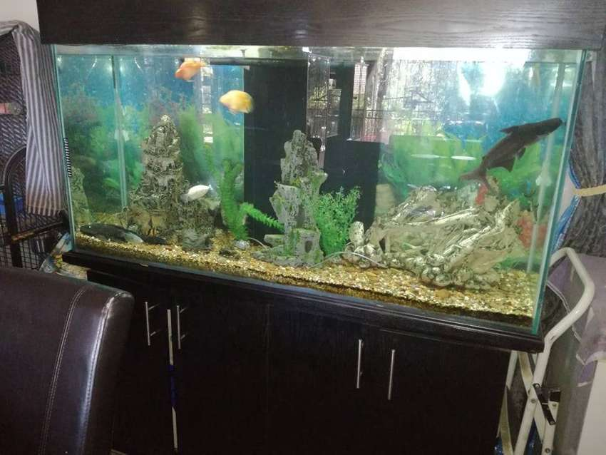 1.5m Fish Tank with accessories 0
