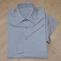 Рубашка (короткий рукав)_9-10 лет_350 руб.