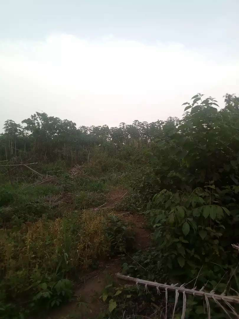 6.5acres of land suitable for factory at Aba nla with c of o 0