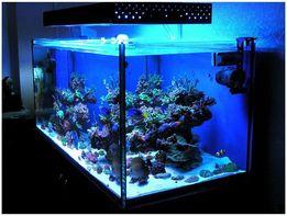 Продам светодиодную ленту для подсветки аквариума