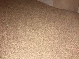Пшениця Зерно