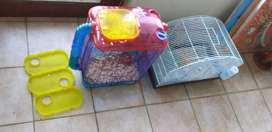 Hamsters, cages and accessories