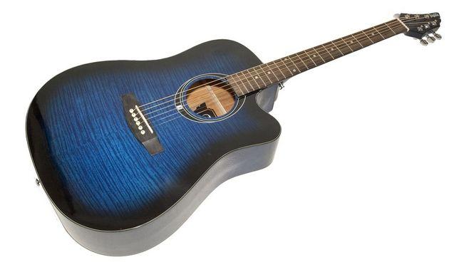Profesjonalna gitara akustyczna Częstochowa - image 1