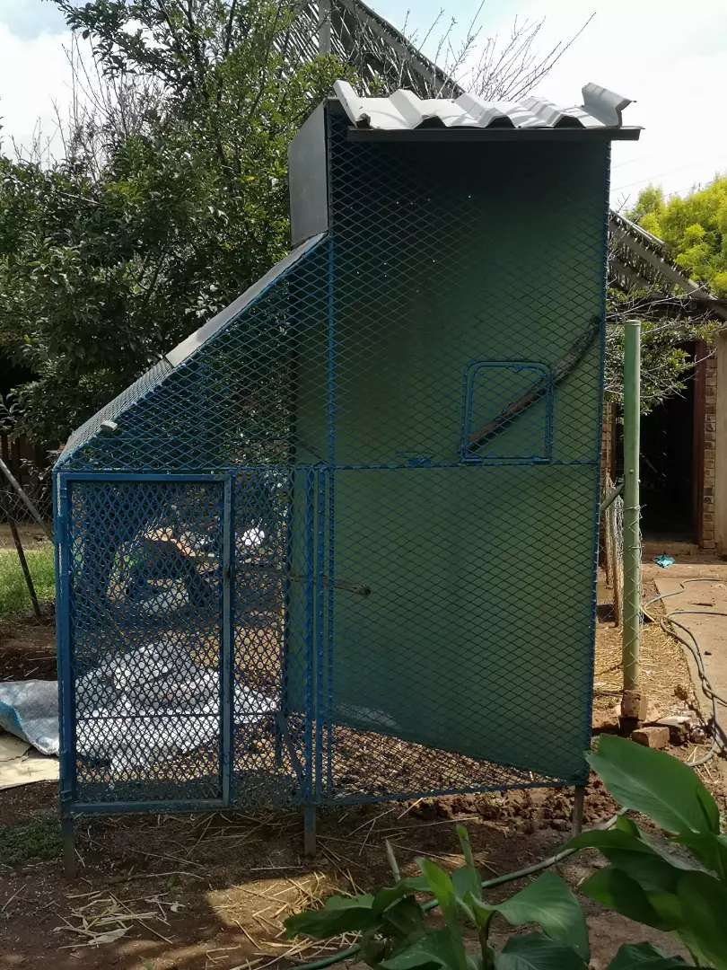 OUTDOOR PARROT / MONKEY CAGE