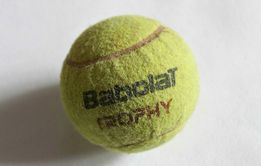 Теннисный Мяч (Мяч для Большого Тенниса) «Babolat Trophy»