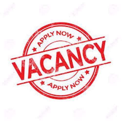FEMALE ACCOUNTANT AND PRO WANTED IN AN ABUJA CLINIC URGENTLY 0