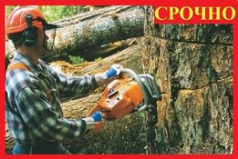 Расчистка участков, СПИЛ ДЕРЕВЬЕВ, покос травы. По Днепропетровску.