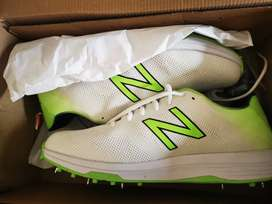 Brand New NB spikes for sale
