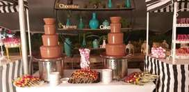 Expand your catering business Chocolate fountains