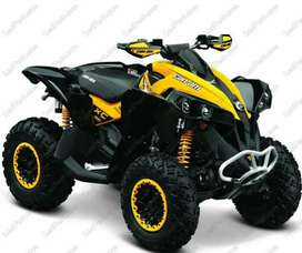 CANAM RENEGADE WANTED