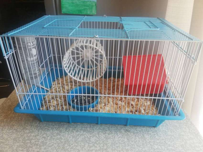 Hamster Cage 0