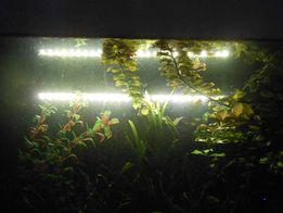 Герметичные светодиодные лампы для аквариума. Фитолампы