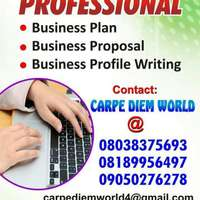 Business plan, profile and proposals writing 0