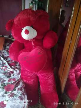 Red big teddy