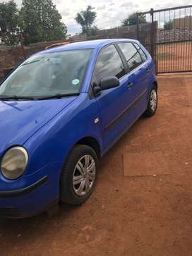 Polo bujwa  for sale available