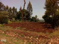 Own Productive Agricultural Land In Kandara, Murang'a Today 1 Acre 0
