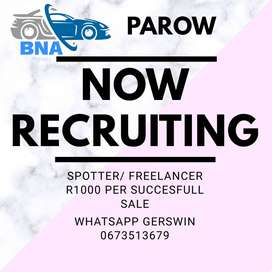 Freelance Spotter! Extra Income!