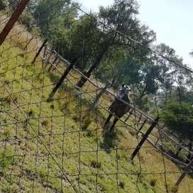 Horse stable for rent R900