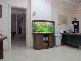 Сервисное обслуживание аквариумов /чистка/уборка Черкассы и пригород