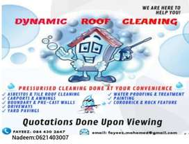 Dynamic Roof Cleaning