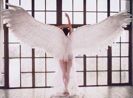Прокат огромных крыльев для фотосессии