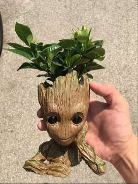 limited addition Groot flowerpot