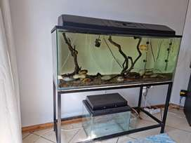 Fish tank with stand and lid 240L