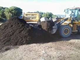 Lawn dressing and black compost.