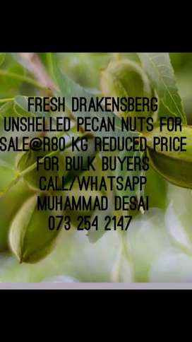 PECAN NUTS FOR SALE.