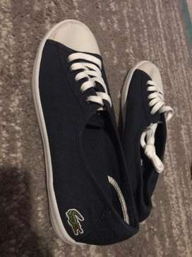 lacoste takkie, never worn before