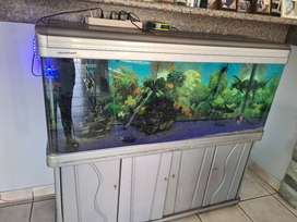Fish tank in complete cabinet with heater and all accessories