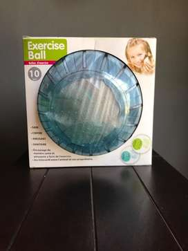 Exercise Ball for Small pets