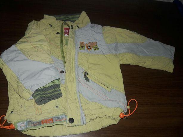 Куртка, куртки мальчику Днепр - изображение 5