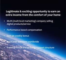 Looking for a Team Member to Join a MLM Company