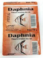 DAPHNIA rozwielitka - pokarm mrożony - 100g Amur - Adamiak-ZOO