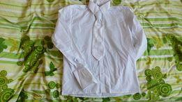 Biała koszula męska z mankietami rozm 39 plus gratis biały musznik