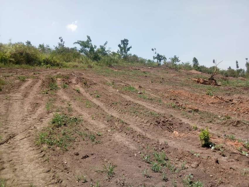 Cheap plots on sale at a price of 13m each 0