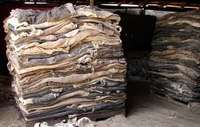 Image of [Dry Donkey Hides] And Skin Available For Sale