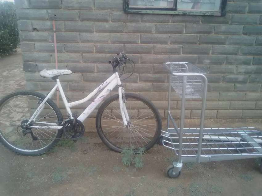 Bicycle 0